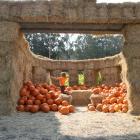Arata Pumpkin farm Half Moon Bay