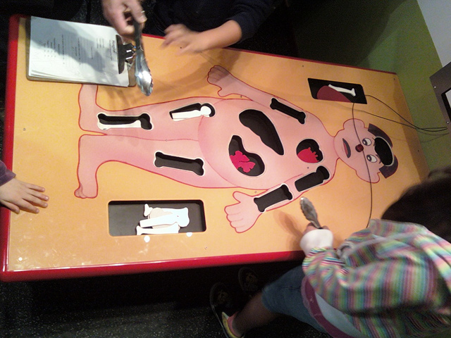 My Museum Giant Size Operation Game