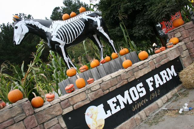 Lemos Farms Half Moon Bay
